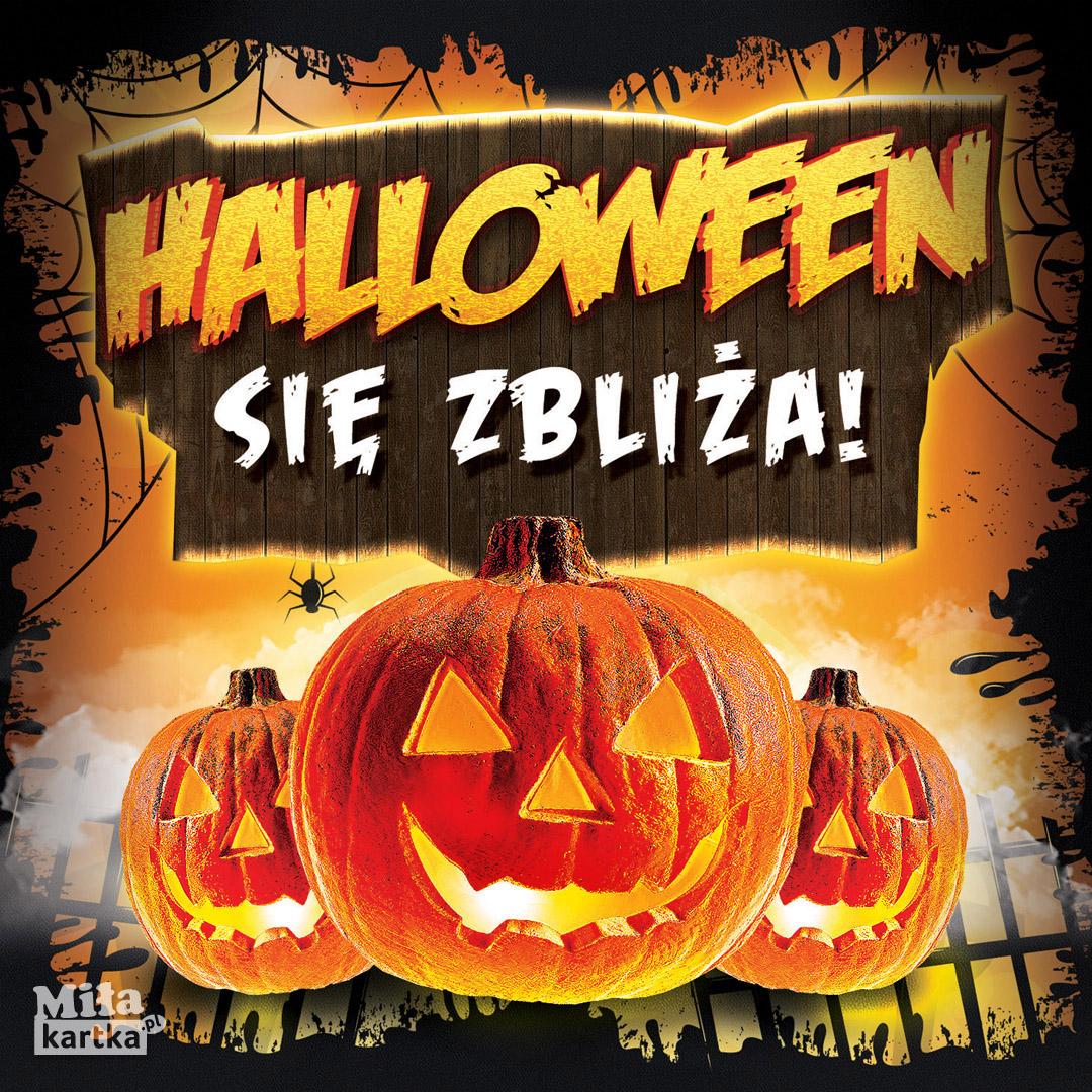 Halloween się zbliża!