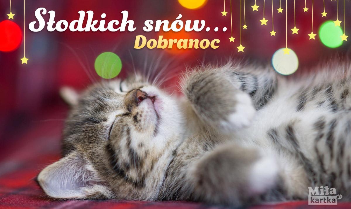Kartka z kotkiem Słodkich snów!