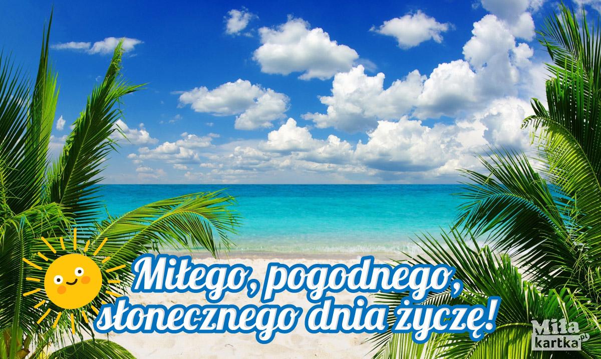 Plaża, palmy i morze – pogodnego dnia Ci życzę!