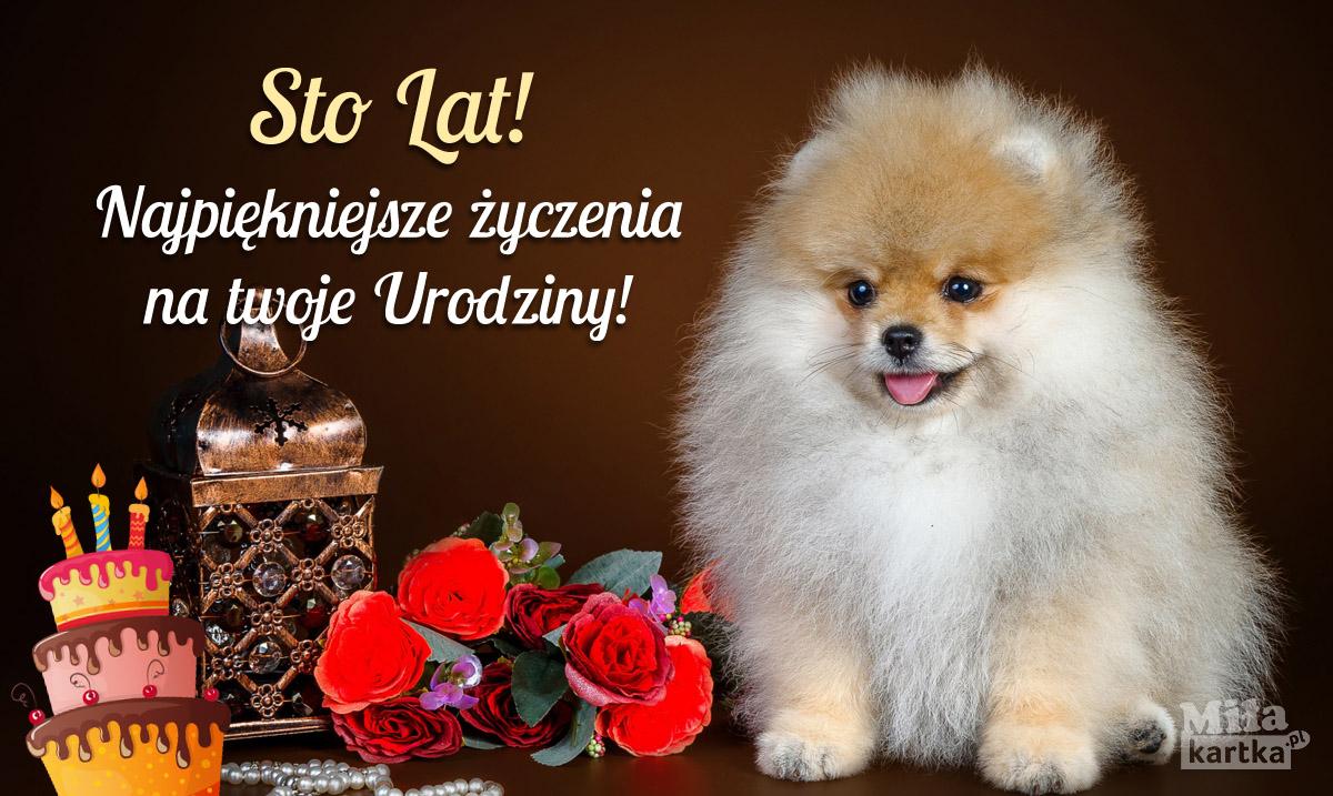 Sto Lat! Najpiękniejsze życzenia!