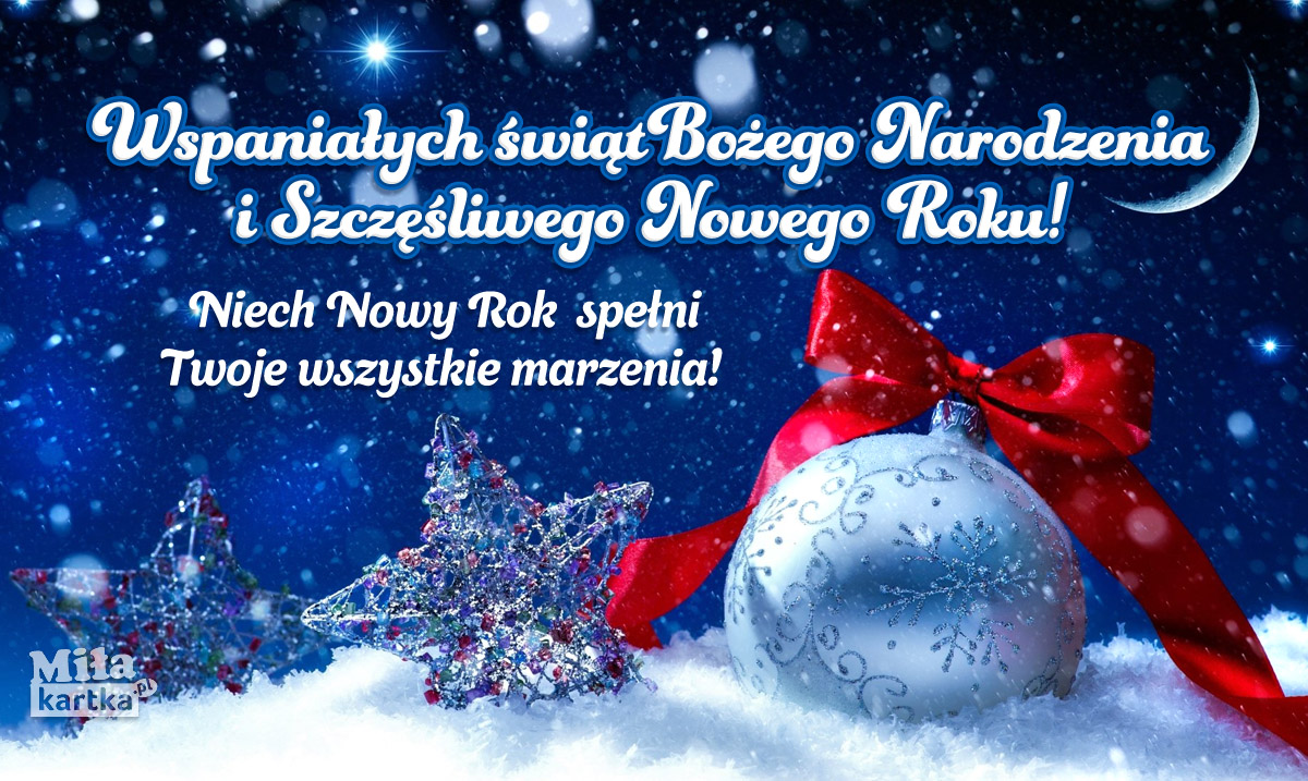 Wspaniałych Świąt! Wesołego Sylwestra!