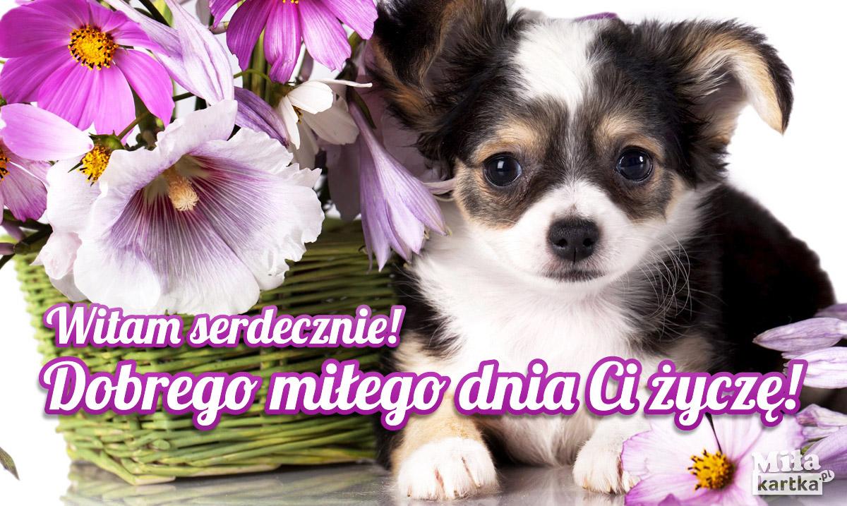 Witam serdecznie, Miłego dnia Ci życzę!