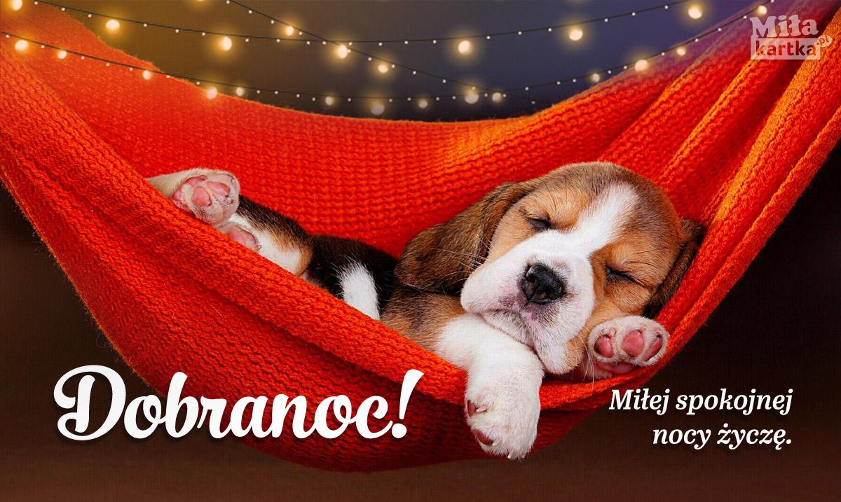 Dobranoc! Miłutkich snów!